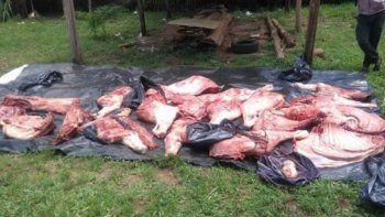 policias robaron vacas y las faenaron en una comisaria