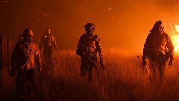 La Pampa ya perdió bosques y miles de hectáreas por el fuego.