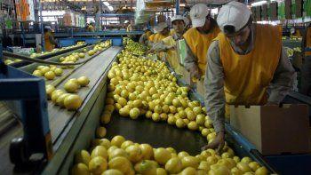 trump decidio no importar limones de la argentina