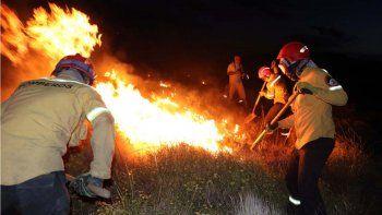 contienen el incendio que consumio 2.500 hectareas