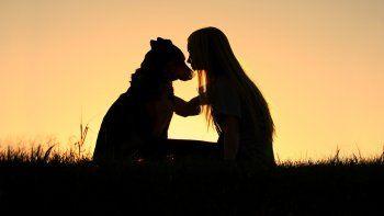 ¿Cuánto duele la muerte del perro?