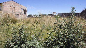 La Municipalidad sale a la caza de baldíos sucios