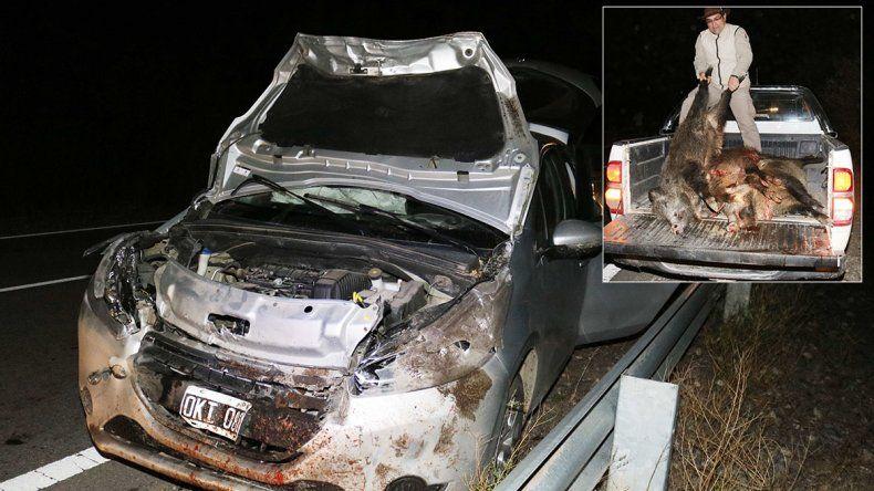 Un auto embistió cuatro jabalíes sobre la Ruta 40