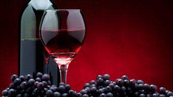 Desde su nacimiento en el siglo XIV, esta cepa se consolidó a lo largo de los años hasta convertirse en una de las favoritas de los bebedores de vino de todo el mundo.