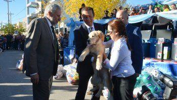 El intendente Andrés Peressini le regaló un cachorro al gobernador Omar Gutiérrez. Instituciones y escuelas sumaron mucho color al desfile que se realizó en horas de la tarde.