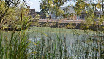 El agua estancada por el taponamiento del río genera lagunas con algas que perjudican a los vecinos del lugar.