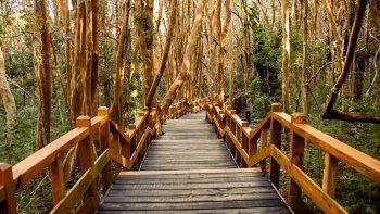 cierran los accesos a parques nacionales por alerta de vientos