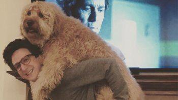 Es la enorme perra de Paul Rust, tan admirada por sus fans que le pidieron al actor de Netflix que le abra un instagram a su mascota.