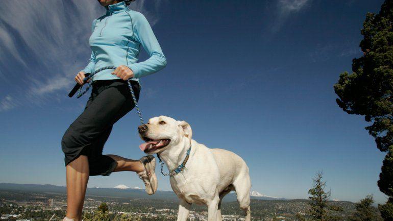 Un perro nos hace hacer ejercicio