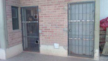 Colocaron rejas en todos los accesos del matadero en La Meseta.