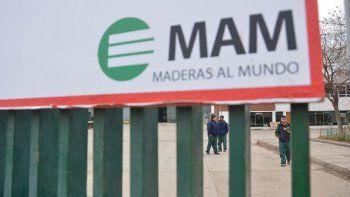 mam: reincorporan tres madereros y el resto acordo indemnizacion