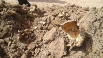 hallan restos humanos y creen que serian de desaparecidos