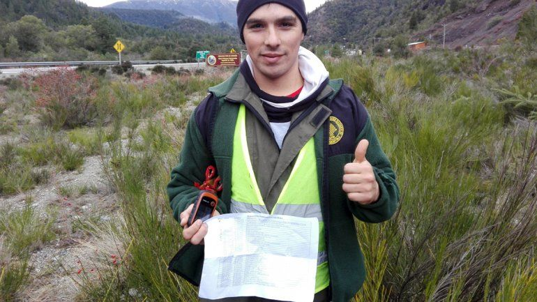 Preocupa el avance de tres especies de pino invasoras