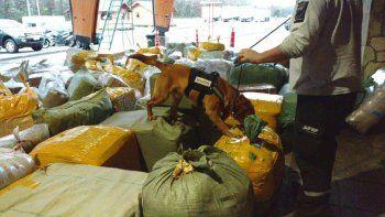 Secuestran millonario cargamento que entraba de contrabando