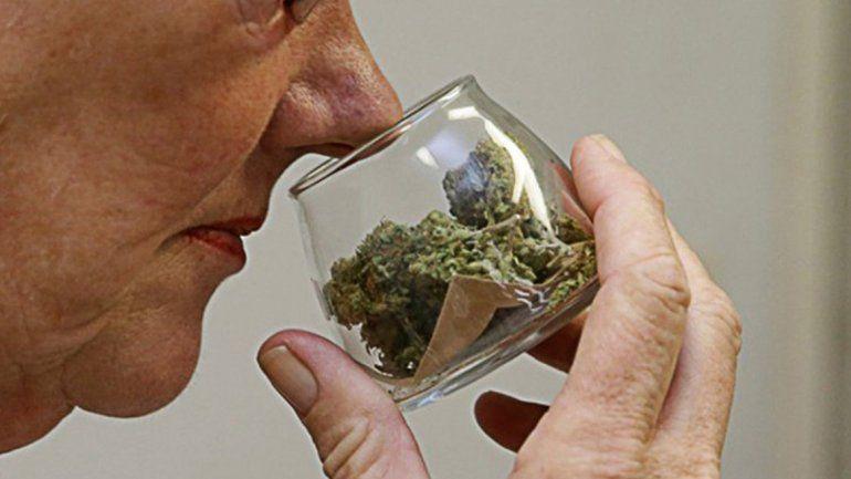 Resultado de imagen para adultos mayores consumen marihuana
