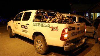 Secuestran 57 astas de ciervo en un operativo en Ruta 40