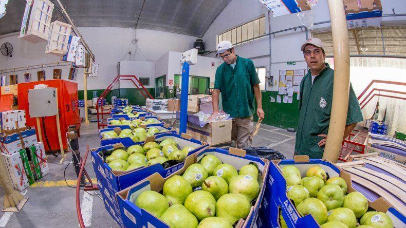 La fruta es el nicho principal de las exportaciones. Sin embargo