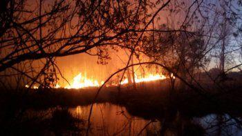 mas de 30 bomberos apagaron un gran incendio en una chacra
