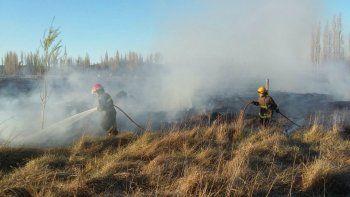 Preocupación por incendio de pastizales en 127 Hectáreas