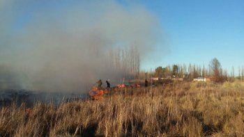 bomberos combaten nuevo incendio de pastizales