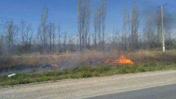 mas de 5 dotaciones de bomberos intentan combatir un incendio sobre la ruta 151