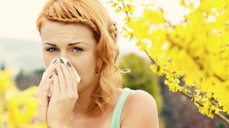 Una alergia es una reacción exacerbada del sistema inmunológico a una sustancia que el cuerpo identifica como invasor y la intenta rechazar. Clínicamente se la define como alérgeno.