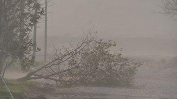 El último temporal de viento generó muchas complicaciones.