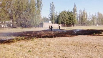 Los bomberos impidieron que se propagara un incendio en Plottier