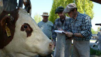 Arrancó hoy la fiesta del campo en la Rural de Junín de los Andes
