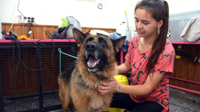 María Inés López se muestra con las mascotas que tiene bajo su cuidado en su propia casa.
