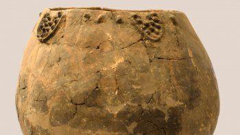 Un equipo de arqueólogos buscaba los orígenes del vino y encontró en el Cáucaso evidencias contundentes. Las preguntas que abren los hallazgos.
