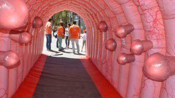 con un colon gigante e inflable, concientizaron en pleno centro