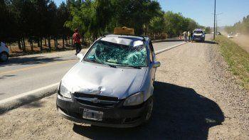 El accidente ocurrió a la altura del kilómetro 2247 de la Ruta Nacional 40.