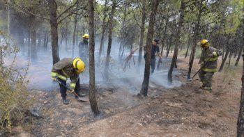 Bomberos y vecinos controlaron un incendio en Parque Norte