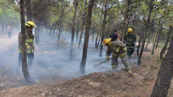 Personal de bomberos, con la colaboración de vecinos, trabajó para extinguir las llamas en el bosque de Parque Norte.