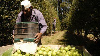Peras y manzanas. Sufrieron las mayores distorsiones.