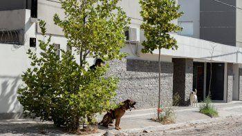 con perros, investigan si julieta sanchez se fue en un auto y la buscan en el chocon