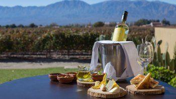 Conocer el mundo del vino en Mendoza, Salta o Neuquén es una buena opción para las vacaciones.