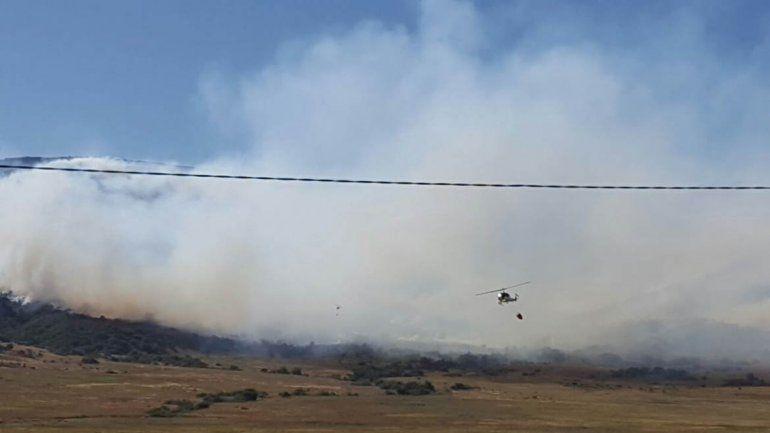 Un incendio cerca de Aluminé consumió 200 hectáreas de bosque nativo