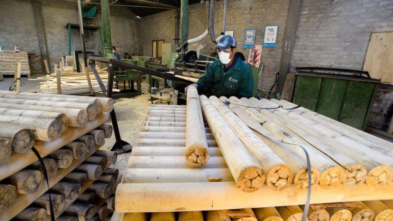 La maderera funciona con la mitad de los empleados que tenía a principios de 2017.