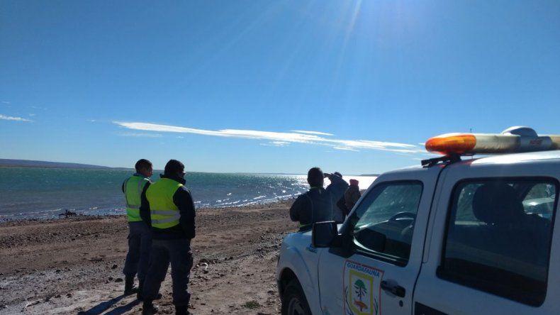 Buzos buscan desde el lunes a un lugareño de Picún que fue a pescar al lago Ramos Mexía