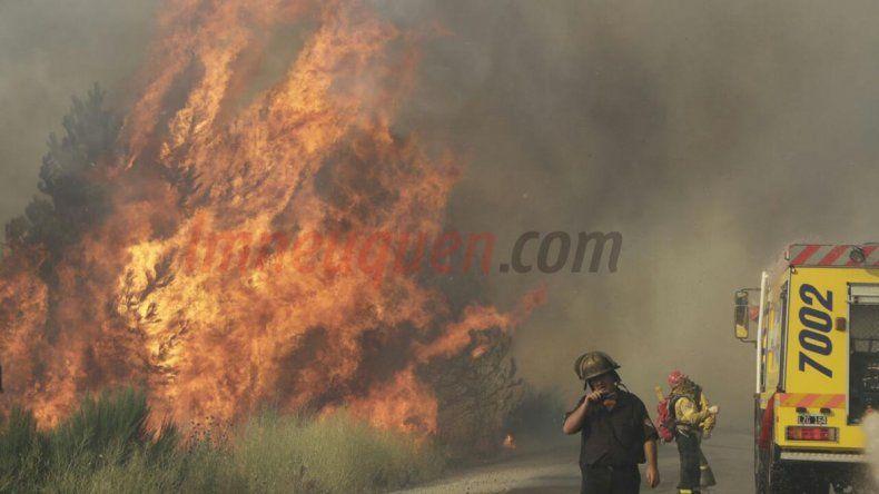 Brigadistas intentan controlar un voraz incendio en San Martín
