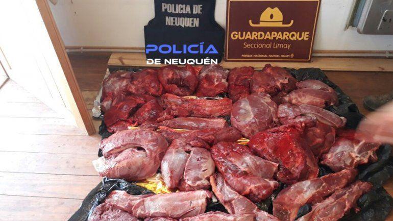 Secuestran dos armas y 100 kilos de carne de caza furtiva