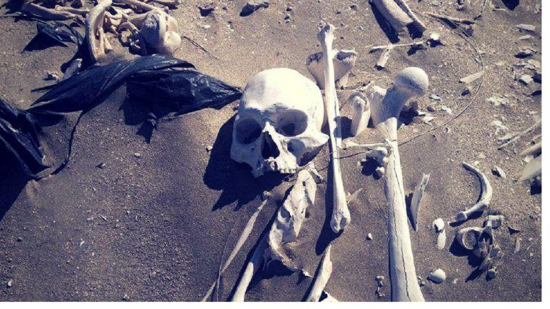 Encontraron 20 esqueletos humanos en la costa de Puerto Madryn