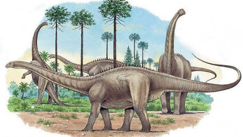 El dino saurópodo fue bautizado Choconsaurus baileywillisi.