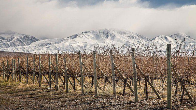 ¿Cuál es la región del vino  argentino de la que todo  el mundo habla y por qué?