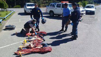 atraparon a un cuatrero con 100 kilos de carne de ciervo