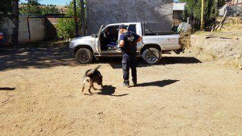 Liberaron a uno de los cuñados del femicida Muñoz