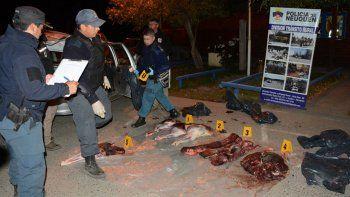 Atraparon a un taxista con 200 kilos de carne de ciervo