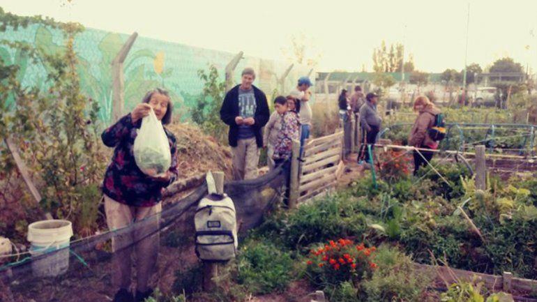 El Proda ofrece capacitaciones sobre agricultura urbana en el Heller